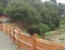 Santa Rosa Creek Bank Restoration