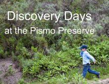 Discovery Days at the Pismo Preserve