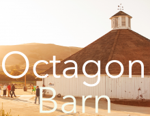 Octagon Barn Center